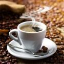 Image of Bio káva – Kávové plantáže nesmú byť chemicky ošetrované