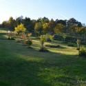 Image of Certifikát prírodnej záhrady naozaj nepotrebujeme | Záhrada v kopci