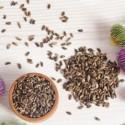Image of Jarná detoxikácia často odstráni príčiny rôznych ochorení - MAGAZÍN BOLD