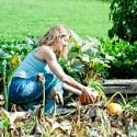 Image of Nikto nie je záhradkár, kým nezíska vlastný pozemok | Moja záhradka
