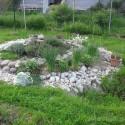 Image of Oprava jazierka pri špirále | Záhrada v kopci