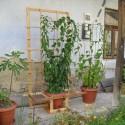 Image of Prenosná opora na kiwi z dreva | Naše hobby