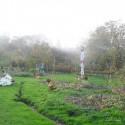Image of Susedia opäť pálili lístie | Záhrada v kopci